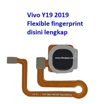 flexible-fingerprint-vivo-y19-2019