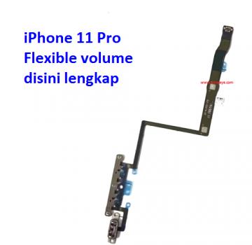 flexible-volume-iphone-11-pro